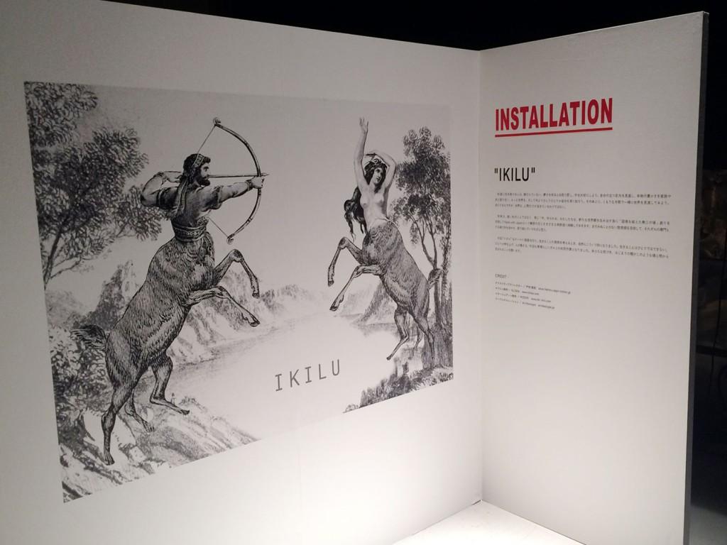 """batoma installation """"IKILU"""""""