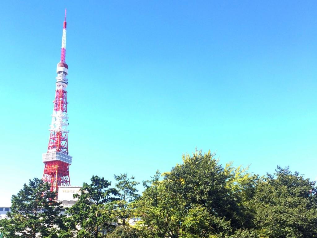 日比谷通りの歩道橋から眺める東京タワー